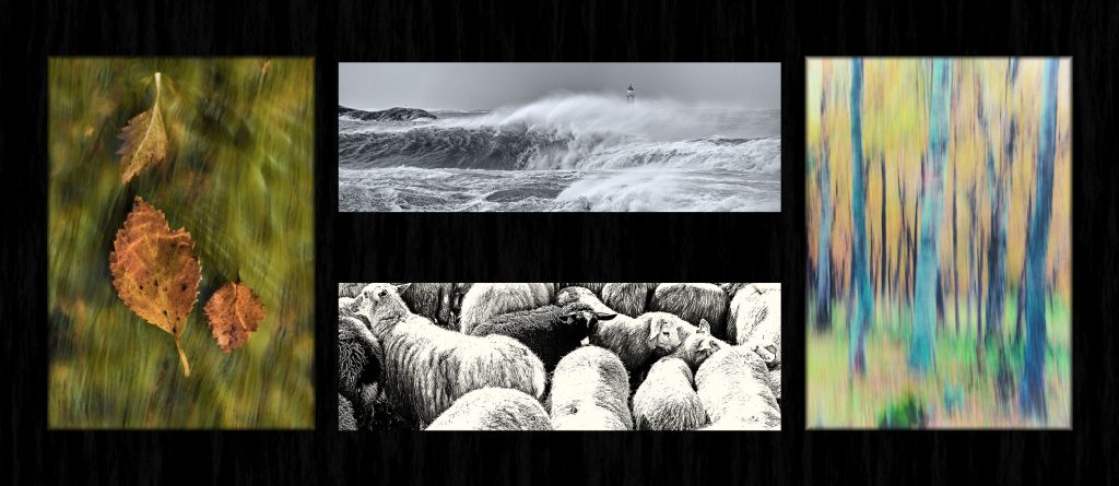 """Foto: © Roar Bech, """"Høst 2"""""""