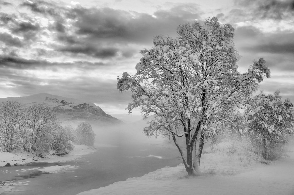 "Foto: © Abdelmuhaymin Abbas, ""Vinter i Fræna"""