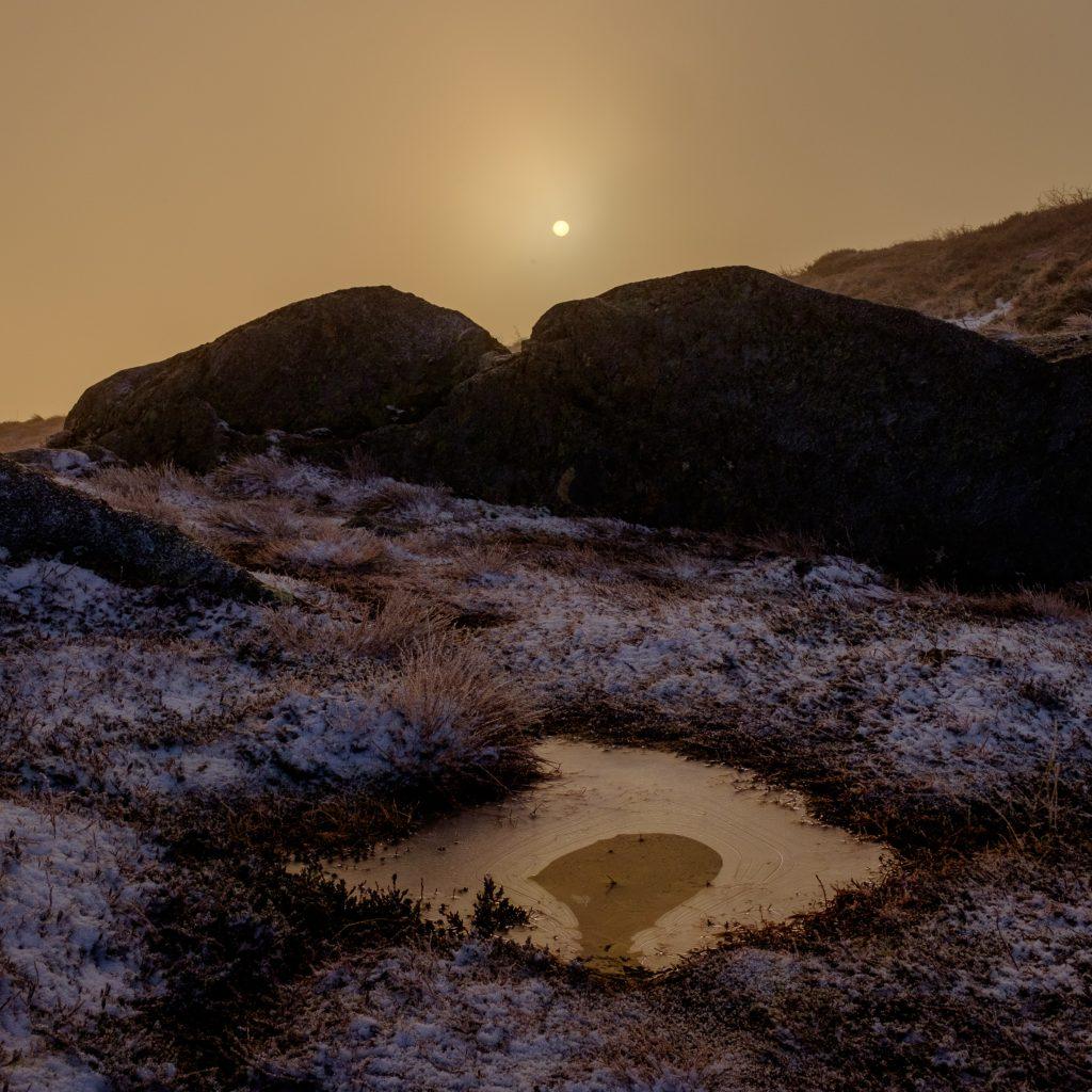 """Foto: © Bjørn Ivar Haugen, """"Desembersol"""""""