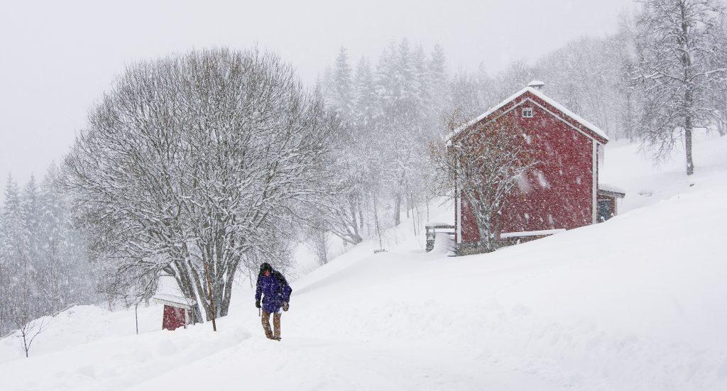 """Foto: © Magnar Fjørtoft, """"Med håp om snarlig vår"""""""