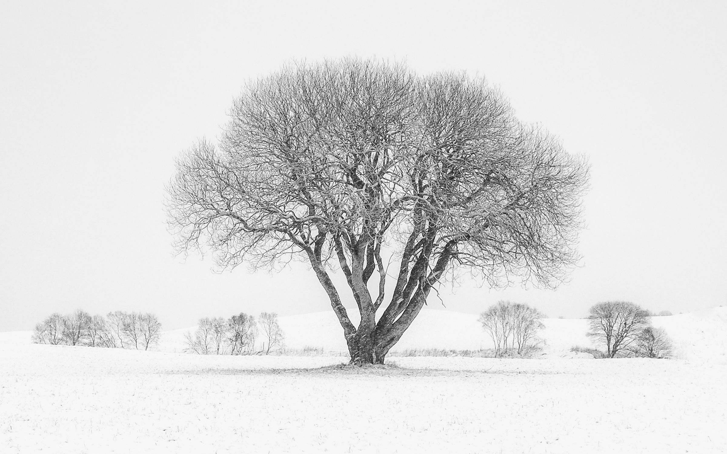 "Foto: © Leif Erling Aasan, ""Vinterlandskap nær Hustadvika"""