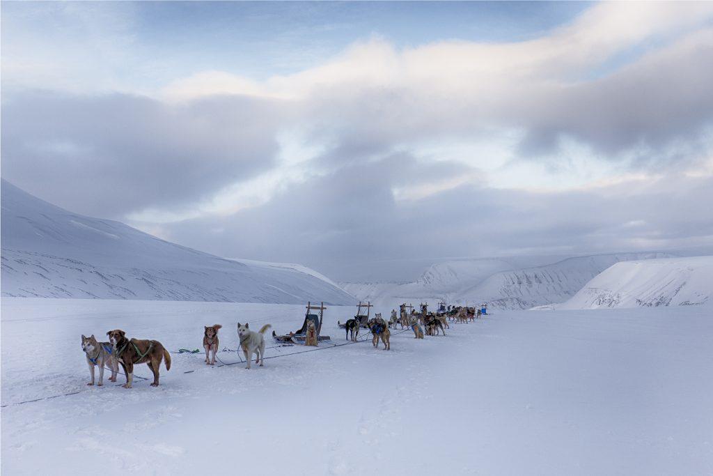 """Foto: © Kjetil Valle, """"Svalbard 2"""""""